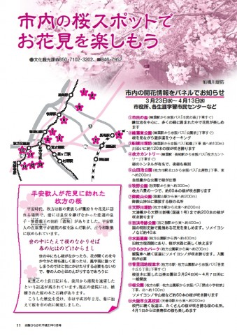 hirakata.sakura
